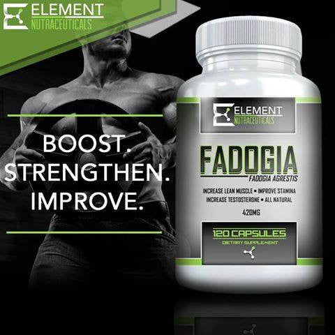 WHAT IS FADOGIA?