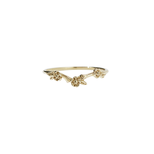 Alba Band | 14ct Yellow Gold