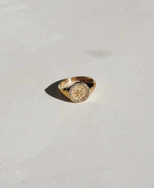 Amulet Peace Signet Ring Pave | 9ct Yellow Gold