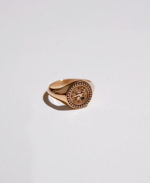 Amulet Peace Signet Ring | 9ct Yellow Gold