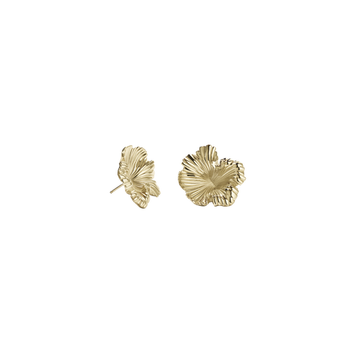 Coral Earrings Small | 9ct Yellow Gold