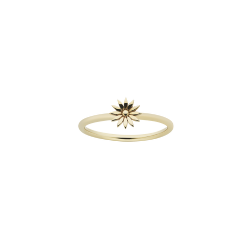 Dazed Stacker Ring | 9ct Yellow Gold