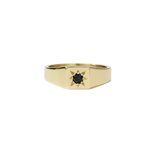 Remy Signet Ring | 14ct Yellow Gold