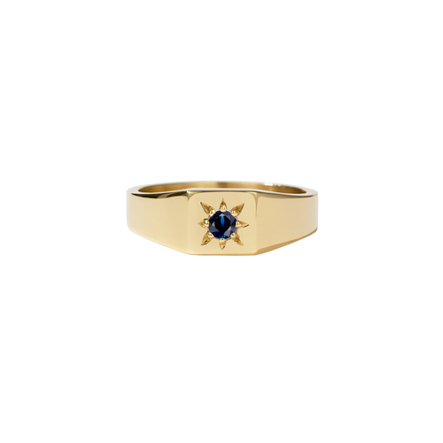 Remy Signet Ring | 18ct Yellow Gold