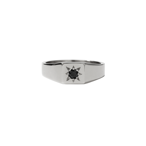 Remy Signet Ring | Platinum