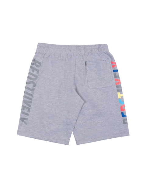 Colors 2.0 Shorts (GRY)