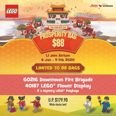 LEGO Lunar New Year Prosperity Bag