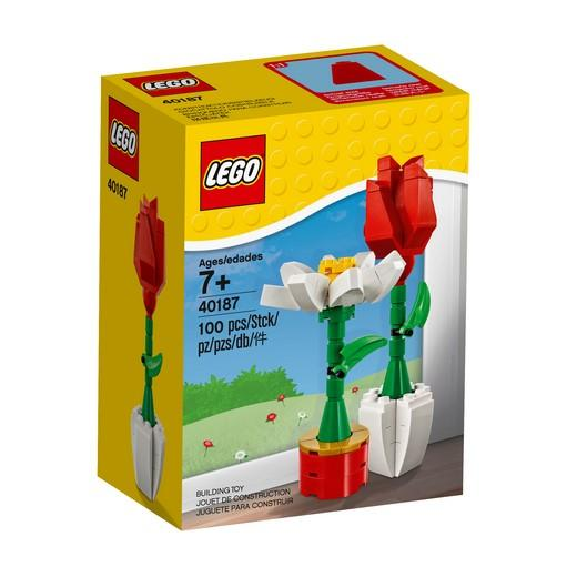 40187 LEGO® Flower Display - LEGO® Bricks World