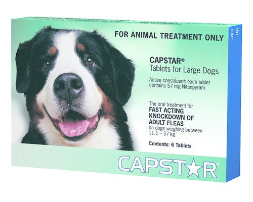 CAPSTAR LARGE DOG FLEA TREATMENT ONE PACK (6 tablets)