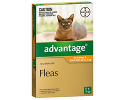 ADVANTAGE ORANGE FOR KITTENS AND SMALL CATS UP TO 4kg (1PK)