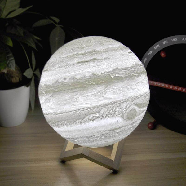 Moon Lamp - Himalayan Salt Company