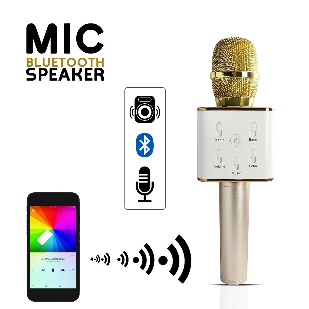 Mic / Mike with Speaker (Bluetooth Speaker)