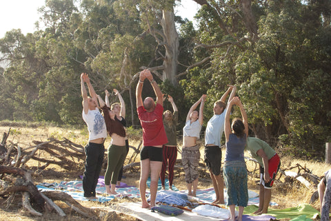 Hollow Tree Yoga
