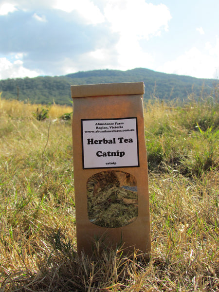 Herbal Tea - Catnip