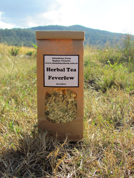 Herbal Tea - Feverfew