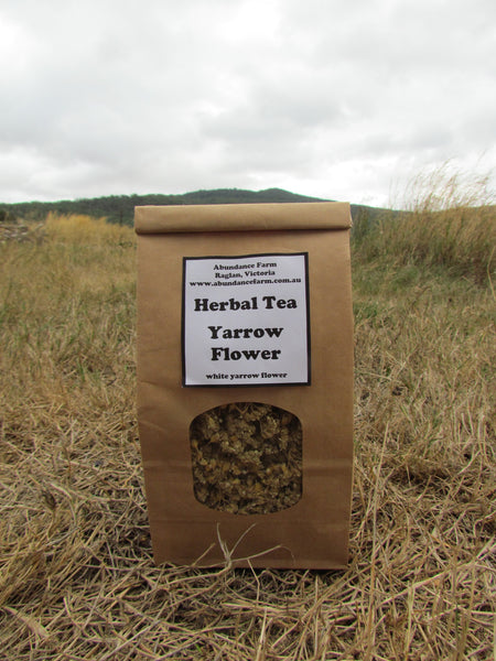 Herbal Tea - Yarrow