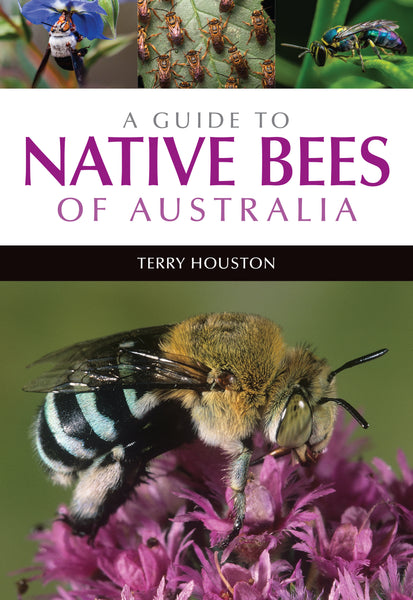 A Guide to Native Bees of Australia - Terry Houston