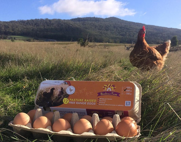 Pasture raised free range eggs
