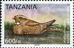 Endemic Birds of Tanzania - Usambara Nightjar - Philately Tanzania stamps