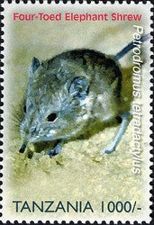 Species of Zanzibar - Preserve - Four Toed Elephant Shrew - Philately Tanzania stamps