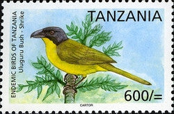 Endemic Birds of Tanzania - Uluguru Bush-shrike - Philately Tanzania stamps