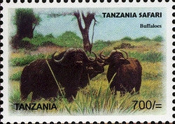 Tanzania Safari - Buffaloes - Philately Tanzania stamps