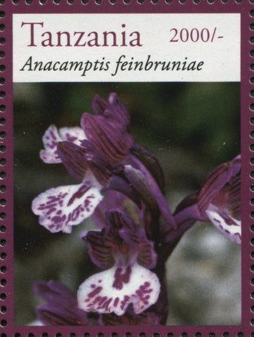 Orchids-Anacamptis - Philately Tanzania stamps