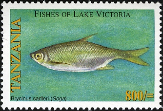 Fishes of Lake Victoria - Brycinus - Philately Tanzania stamps