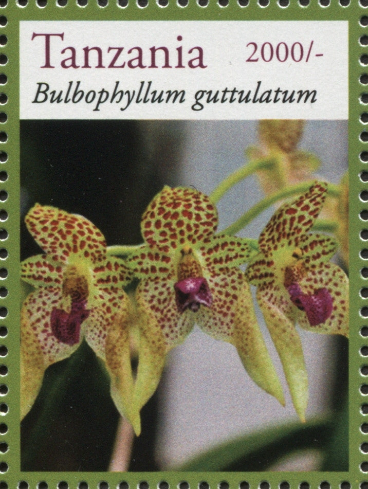 Orchids - Bulbophyllum - Philately Tanzania stamps