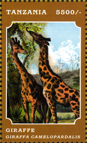 Fauna Mammals - Giraffe - Philately Tanzania stamps