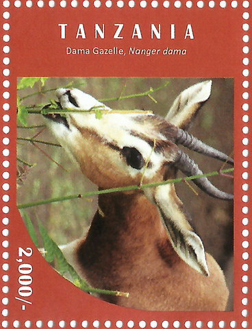 Gazelle - Philately Tanzania stamps