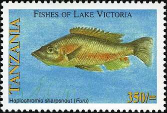 Fishes of Lake Victoria - Haplochromis - Philately Tanzania stamps