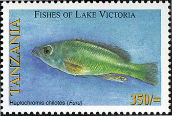 Fishes of Lake Victoria - Haplochromis chilotes - Philately Tanzania stamps