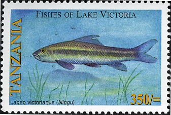 Fishes of Lake Victoria - Labeo - Philately Tanzania stamps