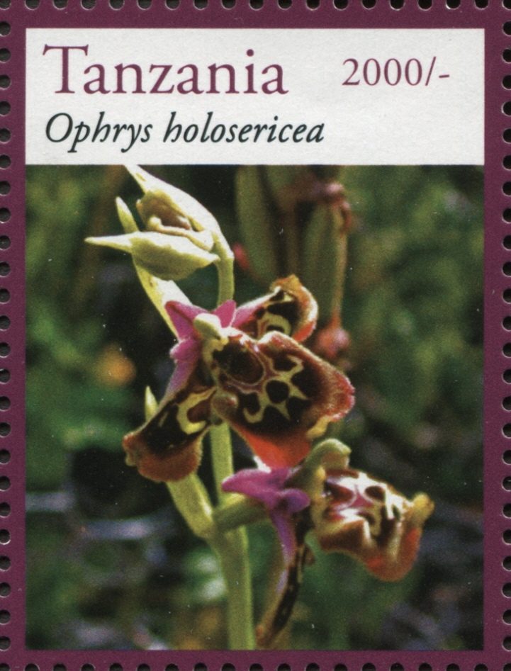 Orchids - Ophrys - Philately Tanzania stamps