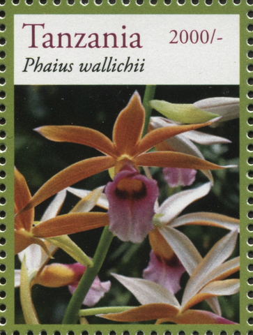 Flora - Phaius Wallichii - Philately Tanzania stamps