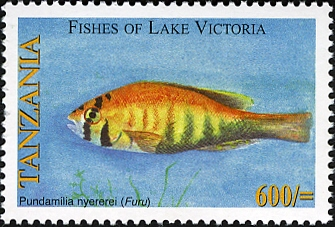 Fishes of Lake Victoria - Pundamilia nyererei - Philately Tanzania stamps
