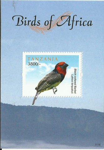 Birds of Africa - Black-collared Barbet - Souvenir - Philately Tanzania stamps