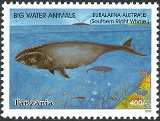 Big Water Animals - Southern Right Whale (Eubalaena australis) - Philately Tanzania stamps