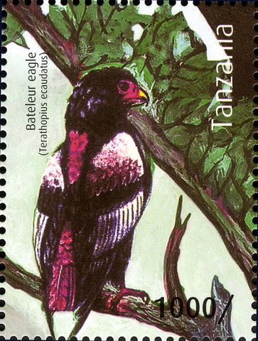 Bateleur Eagle - Philately Tanzania stamps