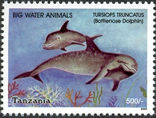 Big Water Animals-Bottlenose Dolphine - Philately Tanzania stamps
