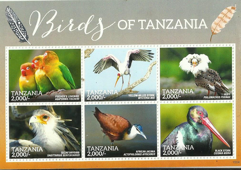 birds of africa - Philately Tanzania stamps