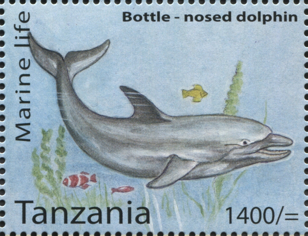 Marine Life - Bottle-nosed Dolphin - Philately Tanzania stamps
