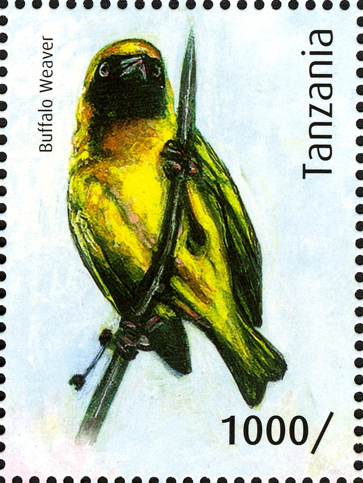 Buffalo Weaver - Philately Tanzania stamps
