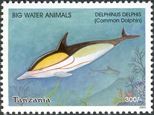 Big Water Animals-Common dolphin - Philately Tanzania stamps