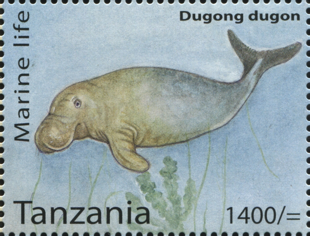 Marine Life - Dugong dugon - Philately Tanzania stamps