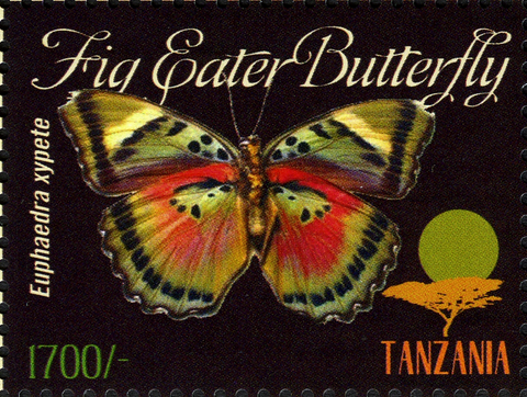 Butterflies of Africa - Euphaedra xypete - Philately Tanzania stamps