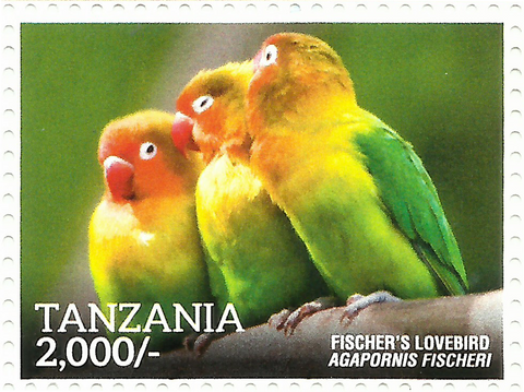 Fischer's Lovvebird - Philately Tanzania stamps