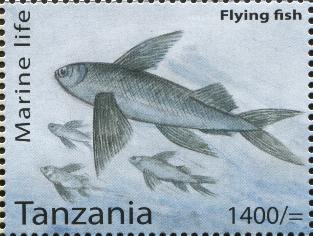 Marine Life - Flying fish - Philately Tanzania stamps