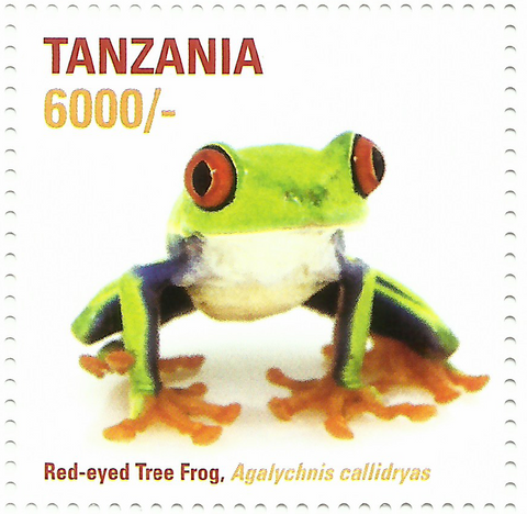 African Frogs- red eyes - Philately Tanzania stamps